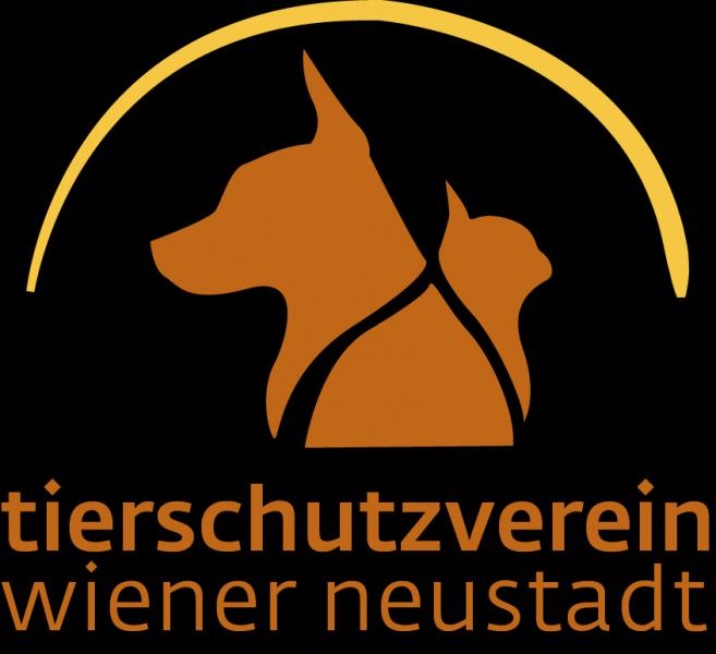 Tierschutzvereintierheim Wiener Neustadt Hello Familiii