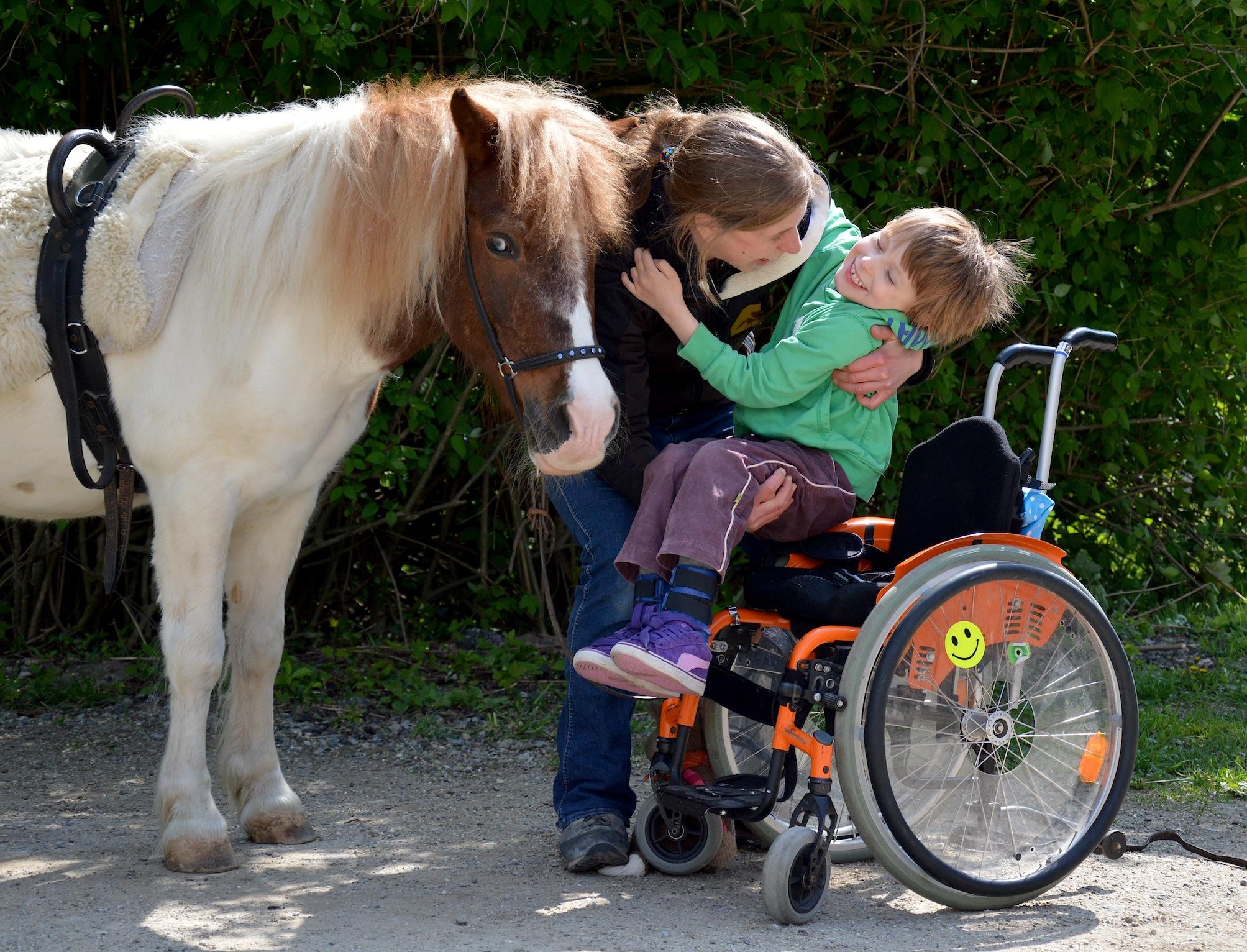 Ein Pferd Für Kinder