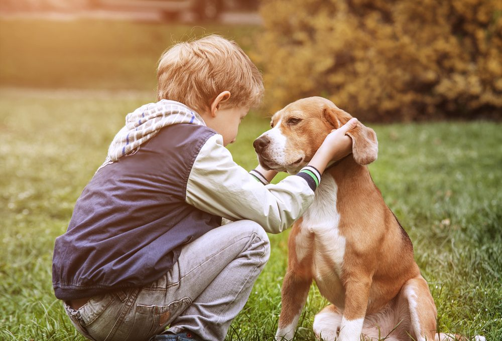 Vorteile Hunde Kinder