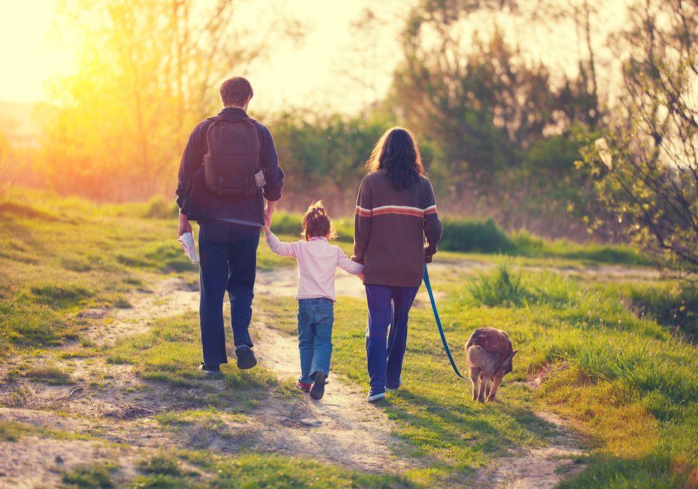herbst sonne wanderungen familie