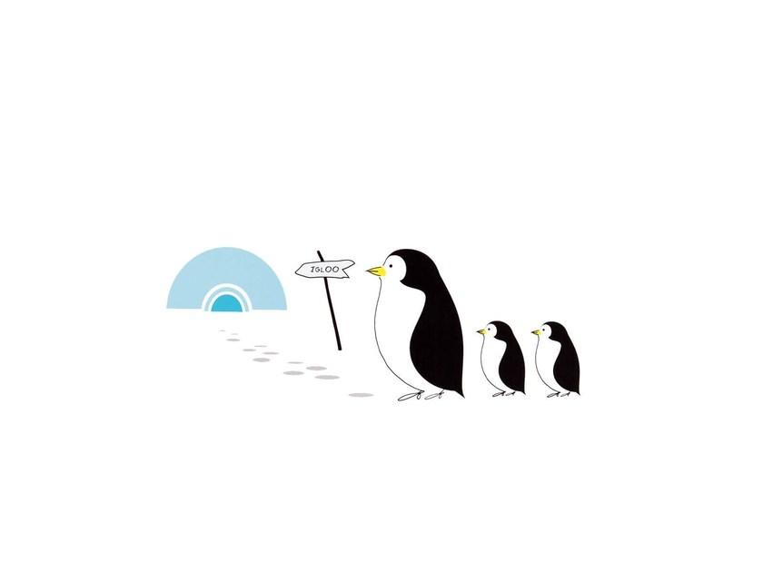 nidi pinguine
