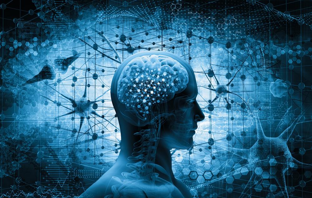 Gehirnkapazität