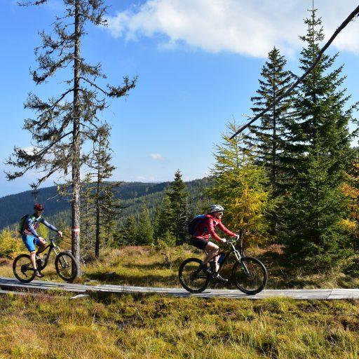 mountainbike-route_leisnitz_st._margarethen