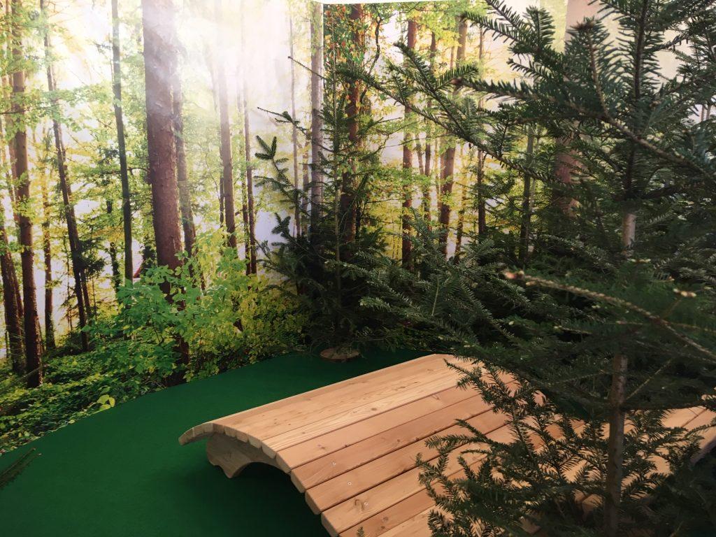 Walddaden in Wenigzell: Bänke mitten im Wald laden zum Waldbaden