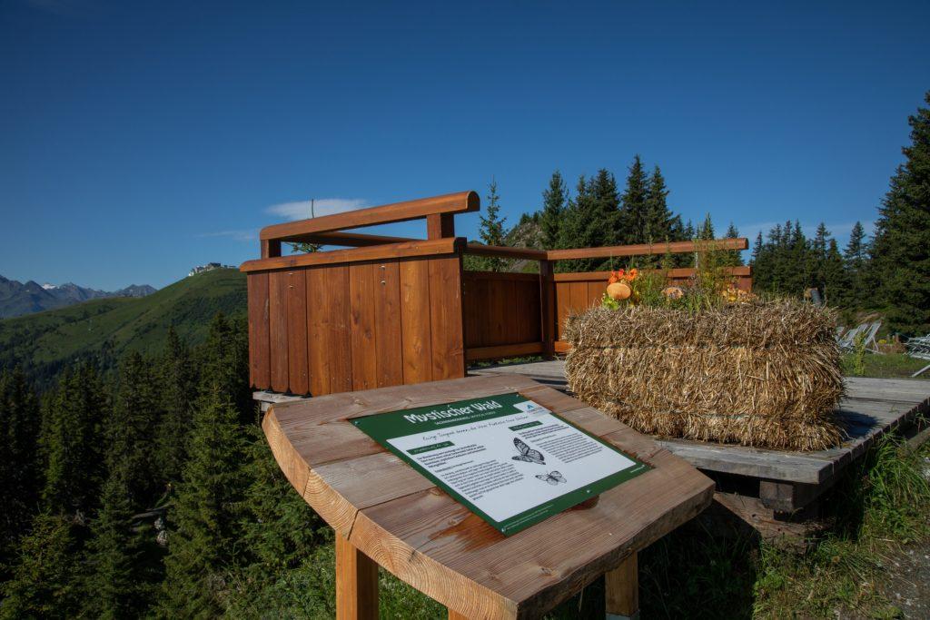Aussichtsplattform Mystischer Wald Schmittenhöhe