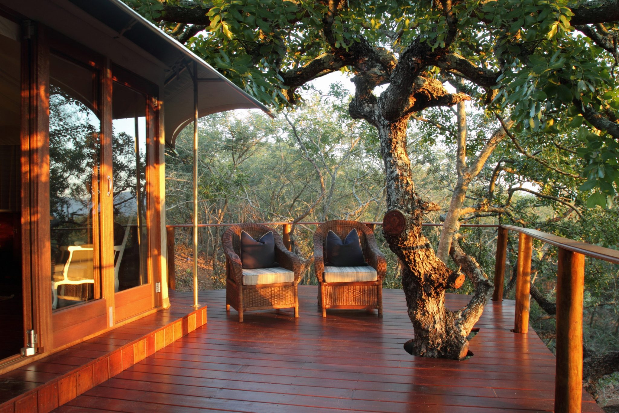 Thanda Tented Camp - Private Deck
