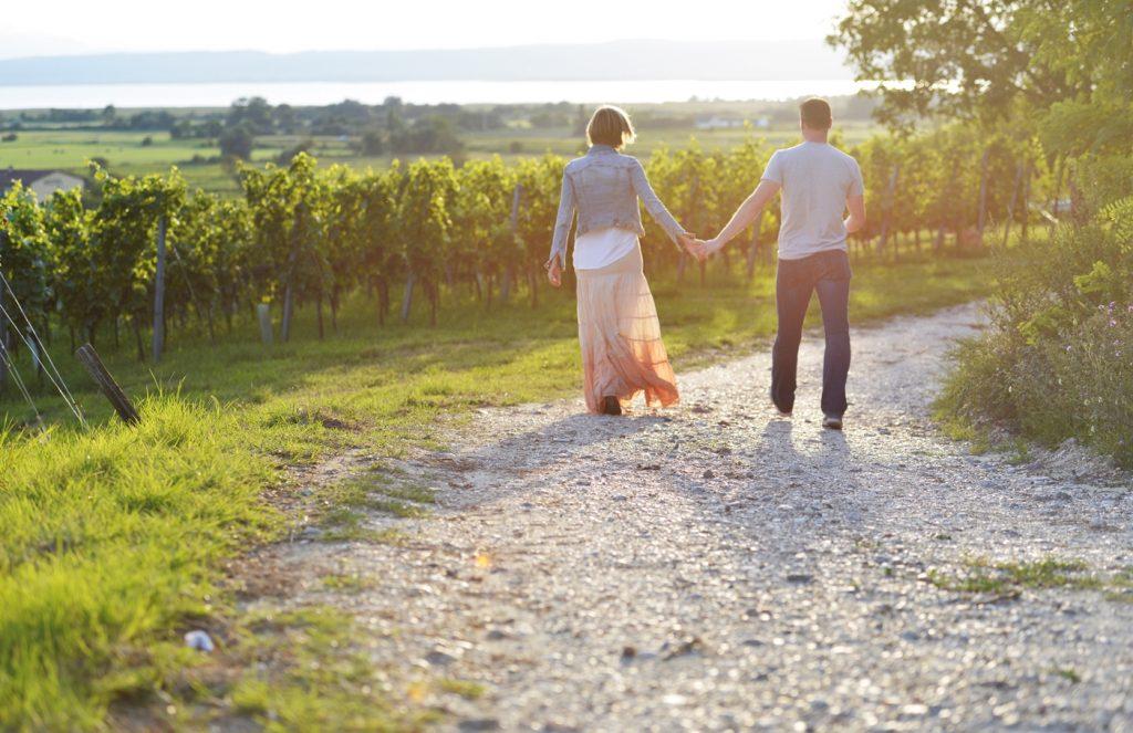 Romantik pur: Wandern im Herbst in der Region Neusiedler See - mit ganz viel vinophilen Genüssen - in der Natur und auch in den Kellern...