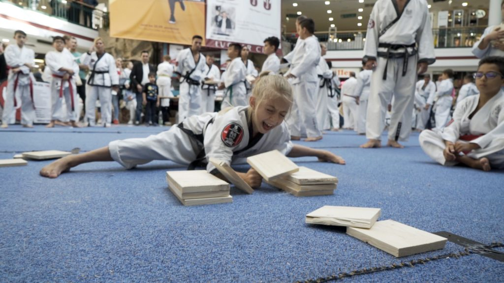 Taekwondo BruchtestMädchen2