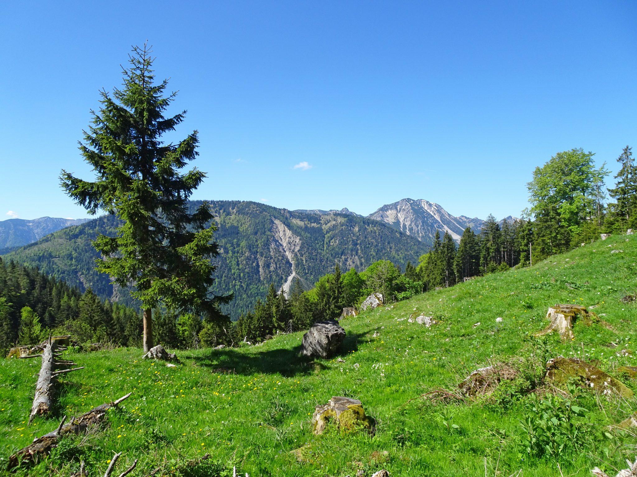 eurohike-wanderreise-bayerns-alpen-seen-impressionen-bergwelt