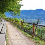 eurohike-wanderreise-suedtiroler-wein-almenweg-lana-waalweg
