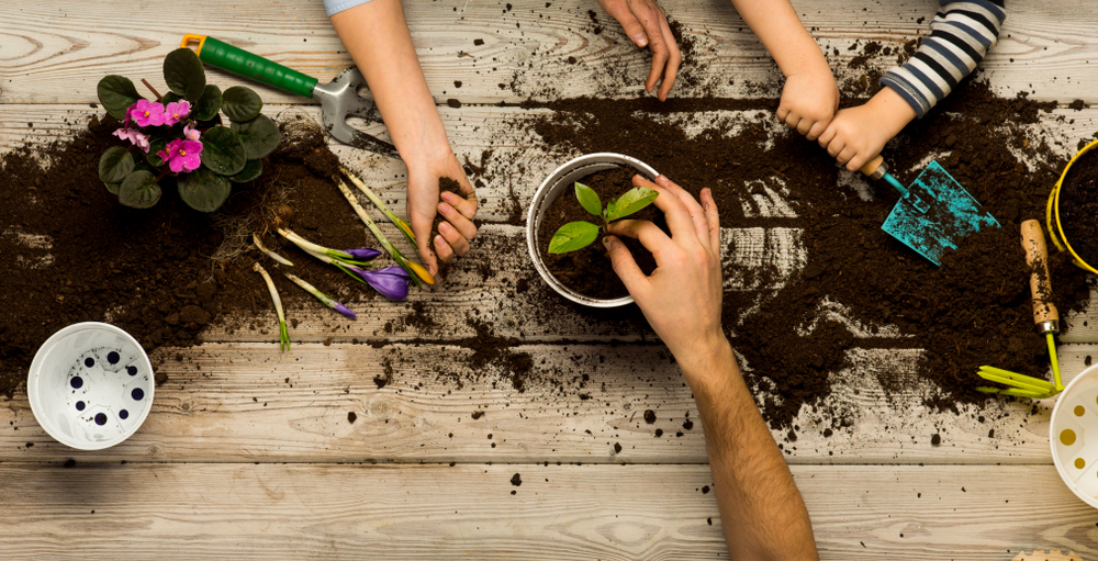 Family,Sits,Flowers,In,A,Pot.,Spring,And,Hobbies,,Family