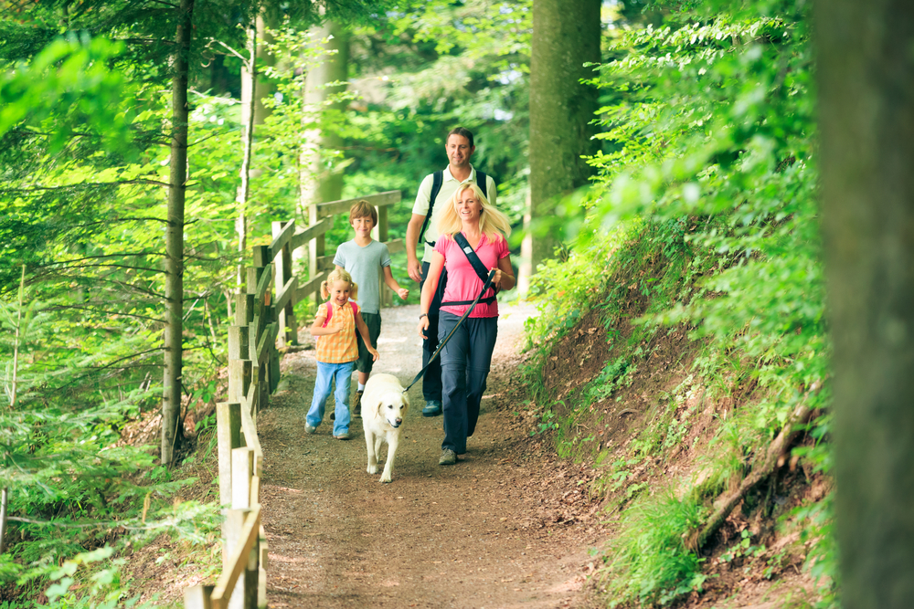 Family,Of,Four,Hiking