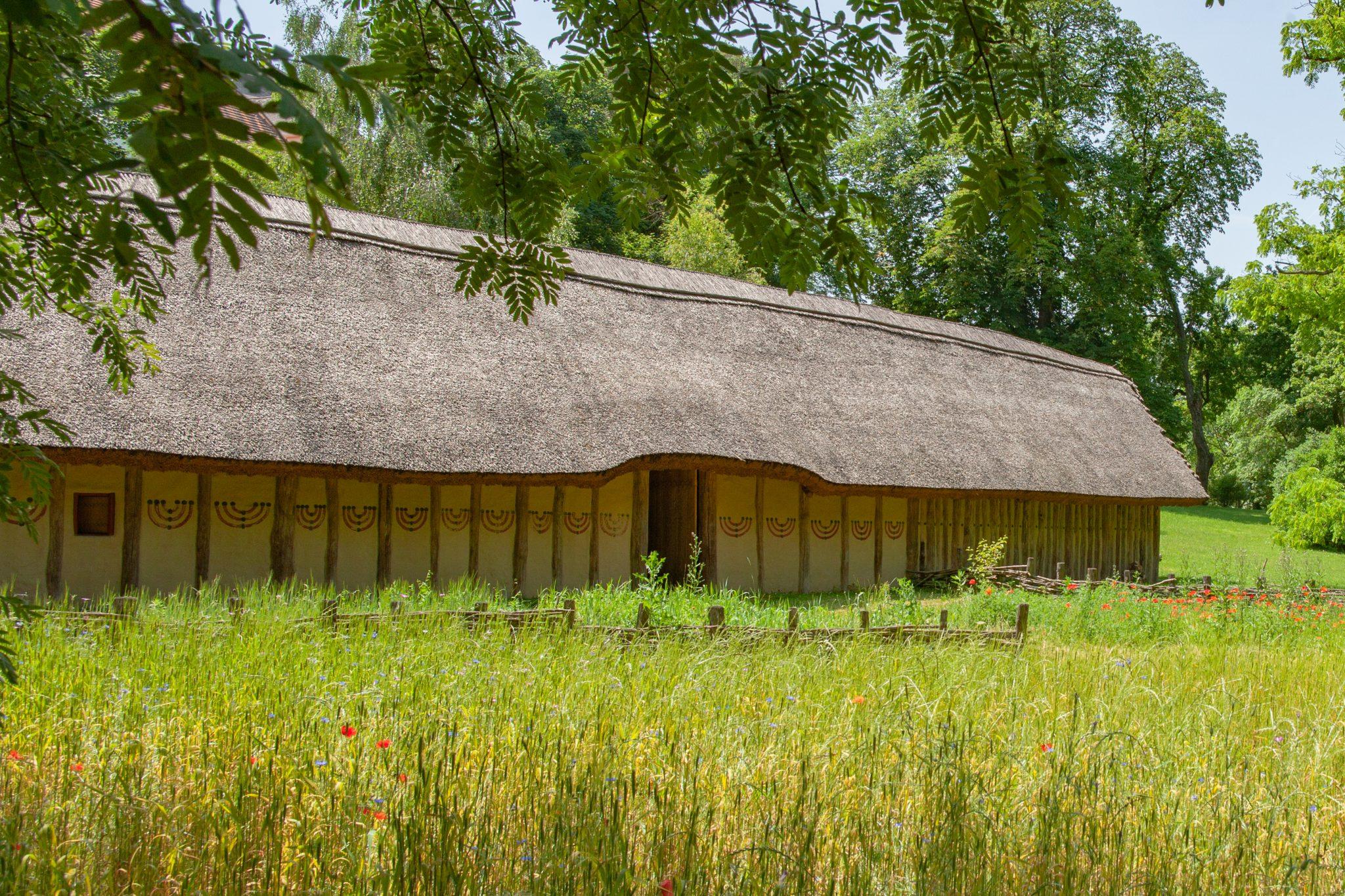 Archäologisches Freigelände - Jungsteinzeitliches Langhaus (c) Atelier Olschinsky