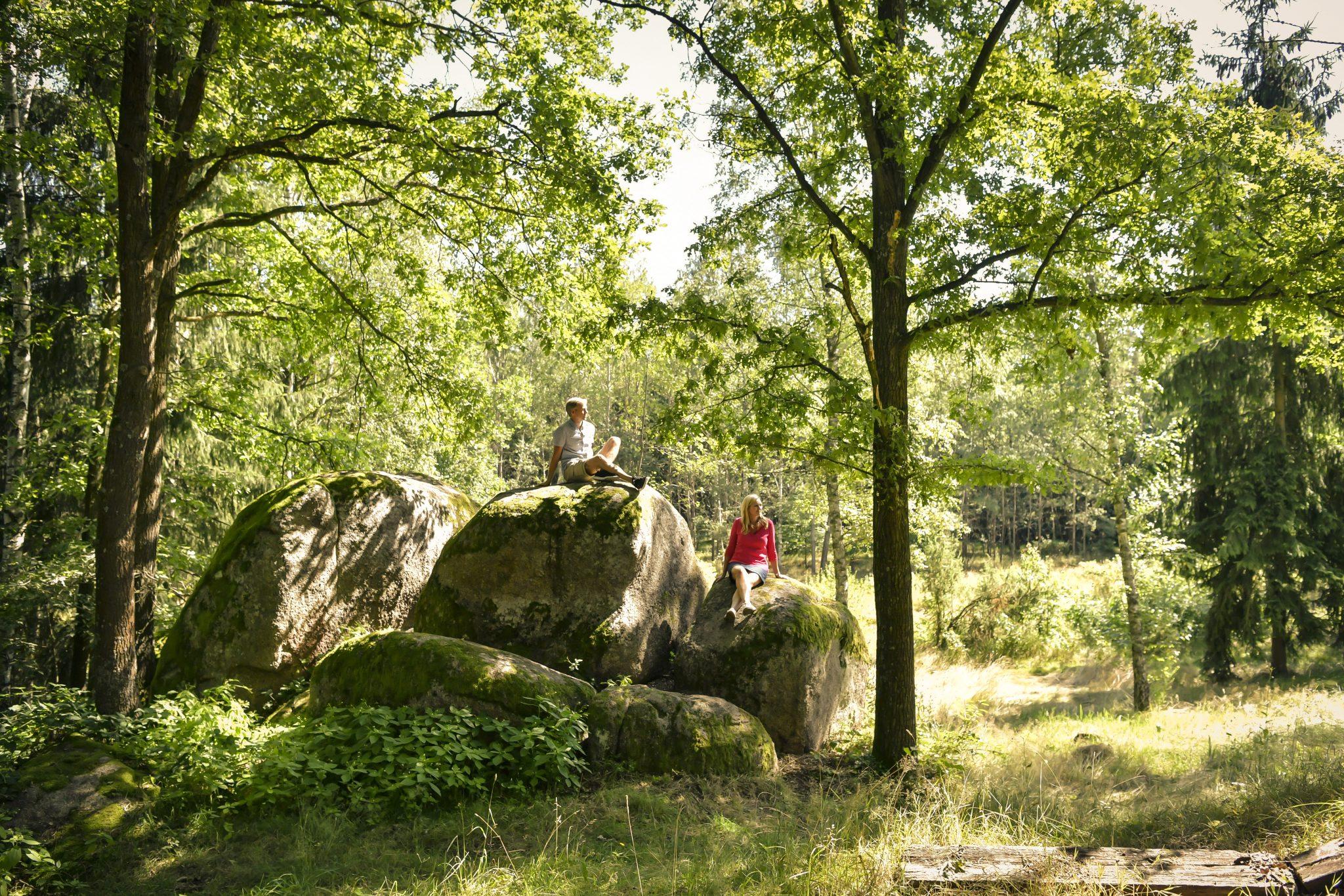 2266Blockheide(c)Waldviertel Tourismus, Robert Herbst