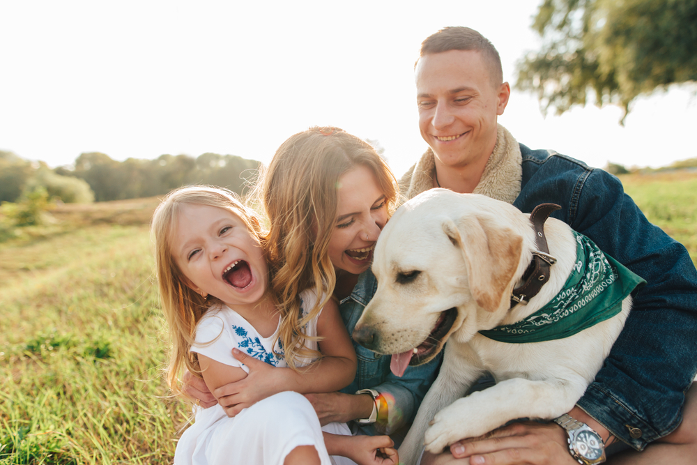 Mom,,Dad,,And,Daughter,Having,Fun,Playing,With,Big,Dog
