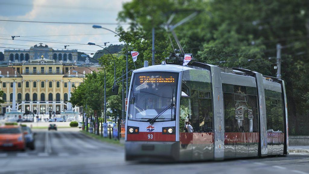 Das Schloss Schönbrunn ist fußläufig von den U4-Stationen Schönbrunn, den Stra§enbahnlinien 10, 60 sowie der Buslinie 10A erreichbar und Hietzing, welche für den Tiergarten, das Palmenhaus und das Wüstenhaus näher liegt, ist mit den Buslinien 51A, 56A, 56B, 58A und 58B am besten zu erreichen.